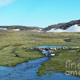 Nina Stavlund - Arctic Wilderness