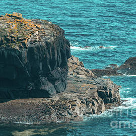 Ardmore Cliff 1 by Marc Daly