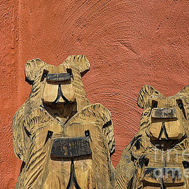 Elisabeth Lucas - Arizona Bears