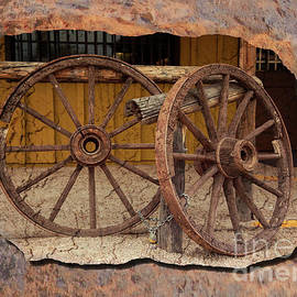 Arizona Wheels by Elisabeth Lucas