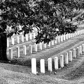 Allen Beatty - Arlington National Cemetery # 2