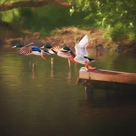 Around the river by Jaroslav Buna