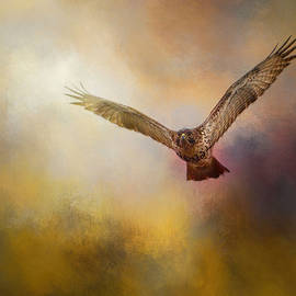 Arrival of The Redtail by Jai Johnson