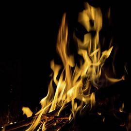 Jennifer White - Art Of Fire