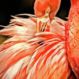 Don Johnson - Artistic Flamingo
