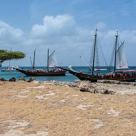 Aruba Snorkel Cove by JG Thompson