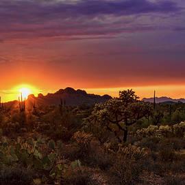 Saija Lehtonen - As The Sun Sets on the Sonoran