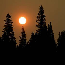 Scott Carlton - Aspiring Sunrise