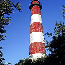 Assateague Lighthouse by Sally Weigand