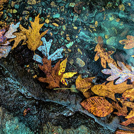 At the Edge of the Water Aqua and Golds by Debra and Dave Vanderlaan