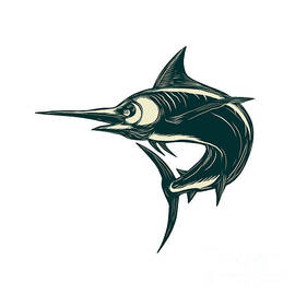 Aloysius Patrimonio - Atlantic Blue Marlin Scraperboard