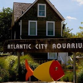 Arlane Crump - Atlantic City Aquarium