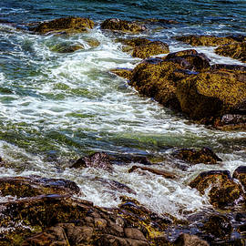 Lilia D - Atlantic - North shore