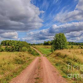 Veikko Suikkanen - August countryside 4