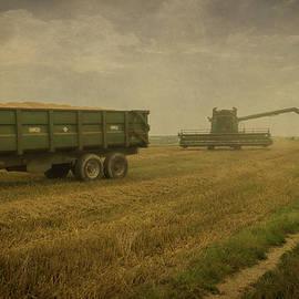 Chris Lord - August Harvest