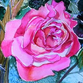 Mindy Newman - August Pink