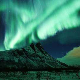 Auroral Dance by David Broome