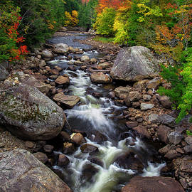 Mark Papke - Ausable Autumn 2