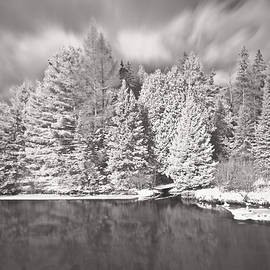 Michael Peychich - AuSable River Infrared 6295