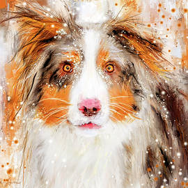 Australian Shepherd Paintings - Lourry Legarde