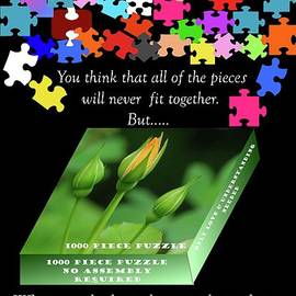 Autism, The Outside Package 2 by Donna Cavanaugh