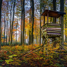 Mah FineArt - Autumn and Hunting Tower