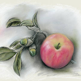 MM Anderson - Autumn Apple and Acorns