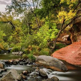 Saija Lehtonen - Autumn Arrives in Arizona
