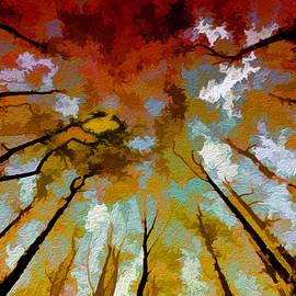 Art Cole - Autumn Ascent