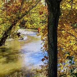 Jennifer White - Autumn At James River Bend