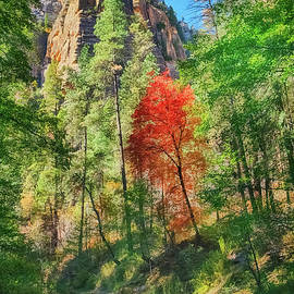 Autumn at West Fork of Oak Creek by Priscilla Burgers