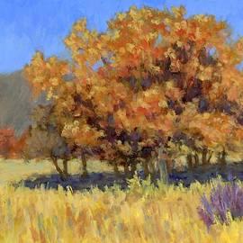 David King - Autumn Blaze