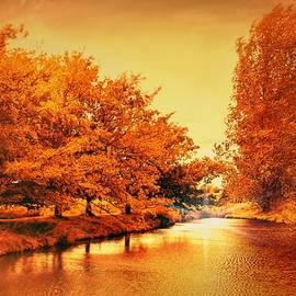 Wallaroo Images - Autumn Breeze