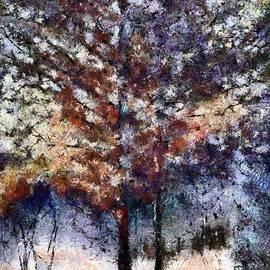 Autumn Cedars by RC DeWinter
