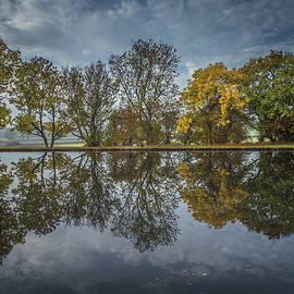 Chris Fletcher - Autumn Display