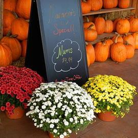Arlane Crump - Autumn Display - Country Market