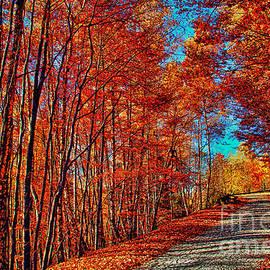Autumn Dream by Mariola Bitner
