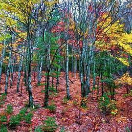 Robert Mullen - Autumn Dream