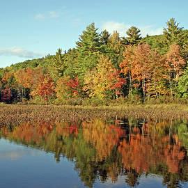 Autumn Enchantment by Lynda Lehmann