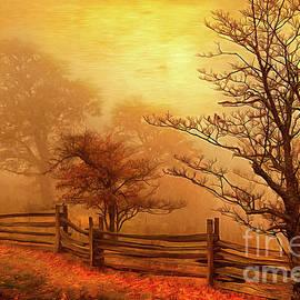 Dan Carmichael - Autumn Fall Colors 3 AP