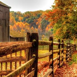 Autumn fence posts scenic by Geraldine Scull