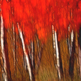 Bill Morgenstern - Autumn Fire