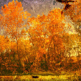 Toni Hopper - Autumn glory