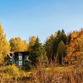 Anna Matveeva - Autumn golden and sunny day in the countryside.