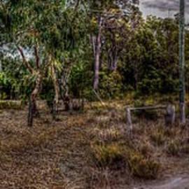 Hans Peter Goepel - Autumn in Australia