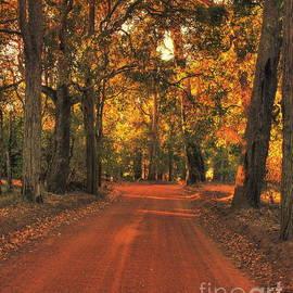 Elaine Teague - Autumn in Bridgetown, Western Australia