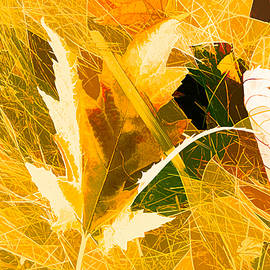 Autumn In Bright Abstract by Debra Lynch