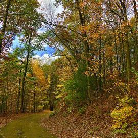 Saundra Myles - Autumn In Connecticut Penwood Park