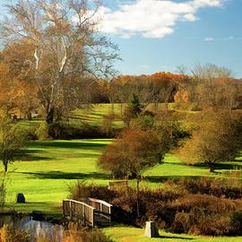 Autumn In The Park by Nancy De Flon