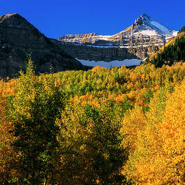 Autumn in the Wasatch by Grant Sorenson